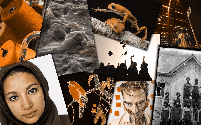 Où peut-on trouver des images gratuites et libres de droits?